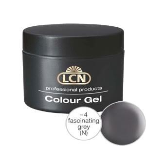 Colour Gel fascinating grey 5 ml